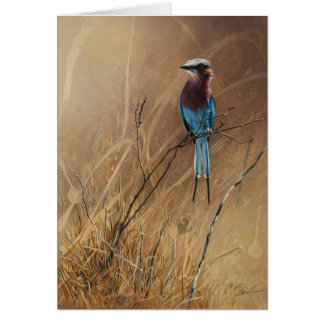 Lilac-Breasted Roller Blank Greeting Card, Denman Card