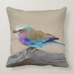 Lilac-breasted roller (Coracias caudata) Throw Pillow
