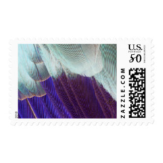 Lilac Breasted Roller Feather Abstract Postage
