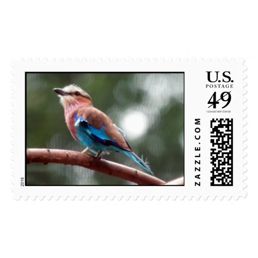 Lilac Breasted Roller Postage Stamp