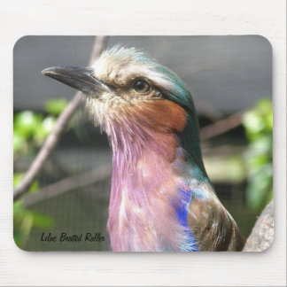 Lilac Brested Roller Mouse Pad