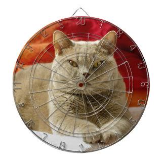 Lilac british shorthair cat dartboard