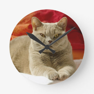 Lilac british shorthair cat round clock