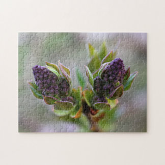 Lilac Buds Opened Jigsaw Puzzle