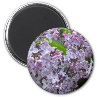 Lilac Bunches 2 Inch Round Magnet