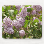 Lilac Bush Beautiful Purple Spring Flowers Mouse Pad