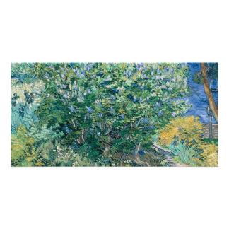 Lilac Bush (Lilacs) by Vincent Van Gogh Card