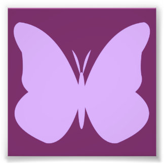 lilac butterfly photo print