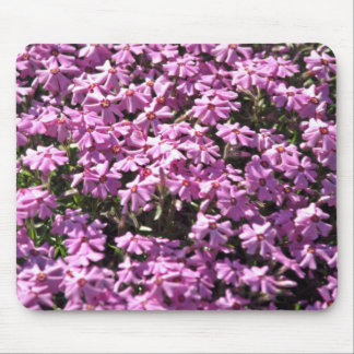 Lilac close-up Red flowers Mouse Pad