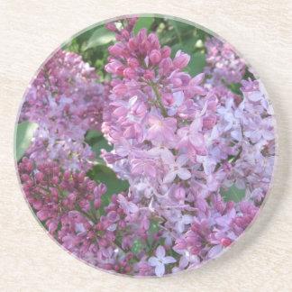 Lilac Coaster