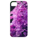 lilac explosion iPhone 5 covers