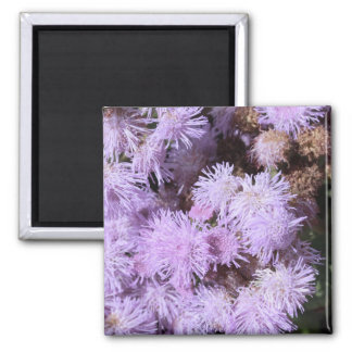lilac feathery flower 2 inch square magnet
