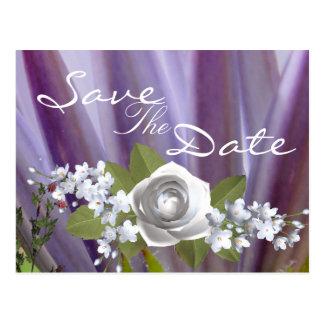 Lilac Fever Postcard