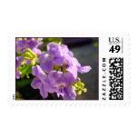 Lilac Flora Postage