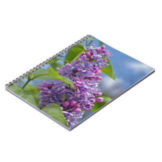 Lilac Flower Photo Notebook (80 Pages B&W)