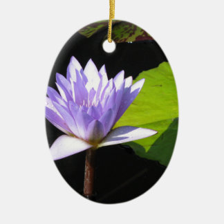Lilac Flower with Lili Pads at Longwood Gardens Double-Sided Oval Ceramic Christmas Ornament