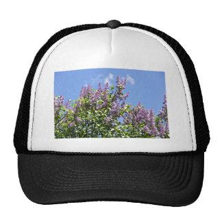 Lilac Flowers In Spring Season Trucker Hat