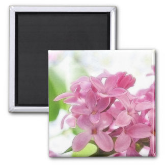 Lilac Flowers In The Morning Sunlight 2 Inch Square Magnet