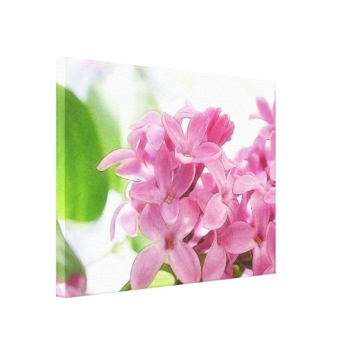 Lilac Flowers In The Morning Sunlight Canvas Prints