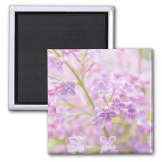 Lilac Flowers Mist Magnet