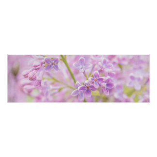 Lilac Flowers Mist Poster