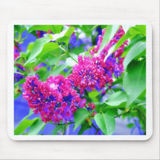 Lilac Flowers-PhotoMagic Mouse Pad
