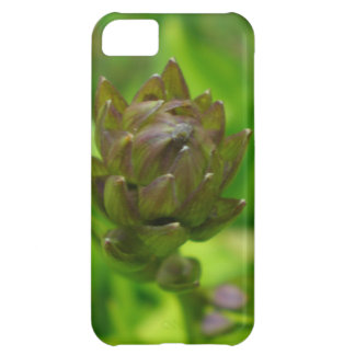 Lilac Hosta Bloom Cover For iPhone 5C
