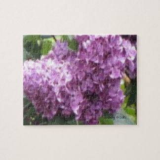 Lilac Lane Puzzle