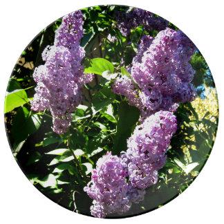 Lilac Mug Plate