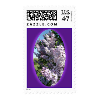 Lilac Oval Stamp