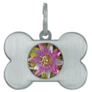 lilac passion flower pet tags