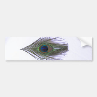 Lilac Peacock Feather Bumper Stickers