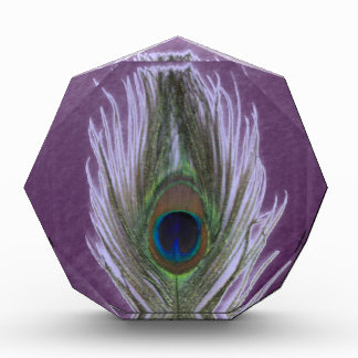 Lilac Peacock Feather D Acrylic Award