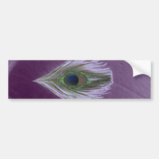 Lilac Peacock Feather D Bumper Stickers