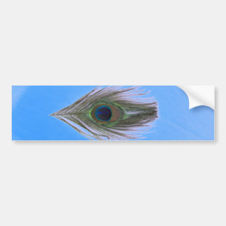 Lilac Peacock Feather on Blue Bumper Sticker