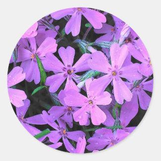 Lilac Phlox Round Stickers