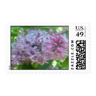 Lilac Postage