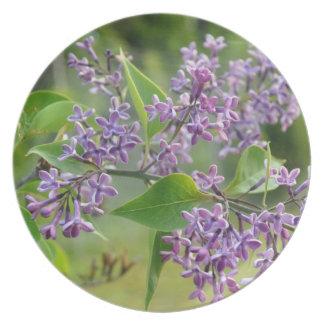 Lilac purple lavander lavender plate