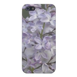 lilac purple lavender lavander flower iPhone SE/5/5s case