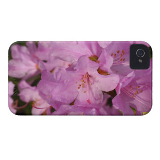 lilac rhododrendron iPhone 4 case