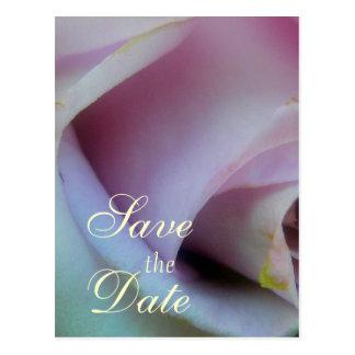Lilac Rose Wedding Postcard