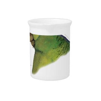 lilac tailed parrotlet, tony fernandes beverage pitcher
