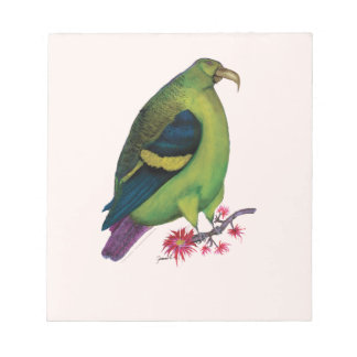 lilac tailed parrotlet, tony fernandes notepad