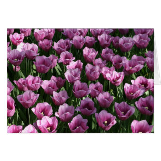 Lilac Tulips Card