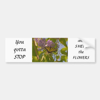 Lilacs and Butterfly Bumper Stickers