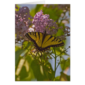 Lilacs and Butterfly Card