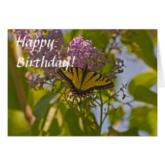 Lilacs and Butterfly Greeting Card