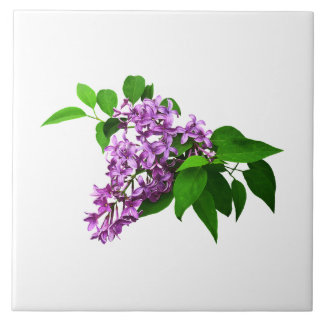 Lilacs and Leaves Ceramic Tile