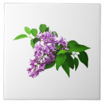 Lilacs and Leaves Tile