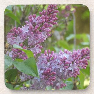 Lilacs Beverage Coaster